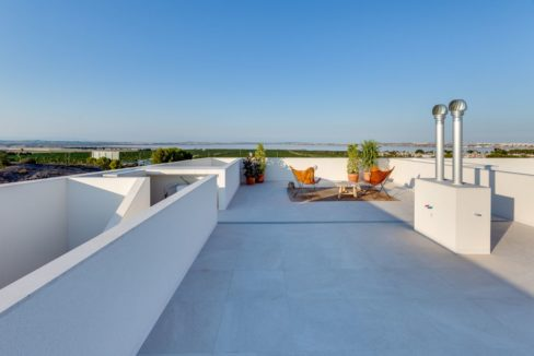 Properties with garden,terrace and solarium in Torrevieja (42)