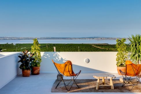 Properties with garden,terrace and solarium in Torrevieja (44)