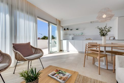 Properties with garden,terrace and solarium in Torrevieja (52)