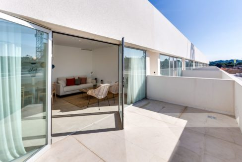 Properties with garden,terrace and solarium in Torrevieja (74)