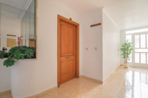 One bedroom apartment for sale in Torrevieja (18)
