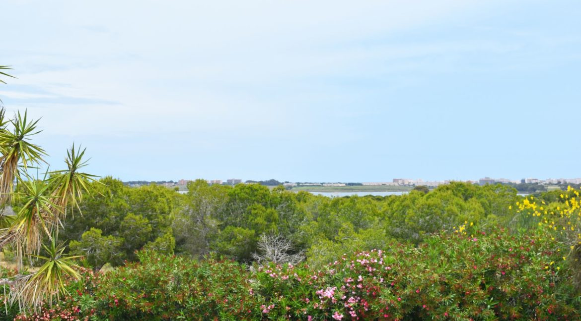 2 Bedrooms Bungalow For Sale Next to the Nature Reserve in La Siesta (2)
